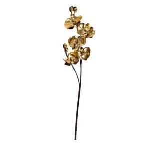Orchidee, gold