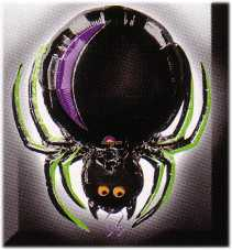 Folienballon-Halloween Spinne