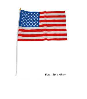 USA Flagge am Stab