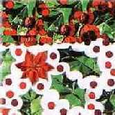 Christmas Flower Konfetti